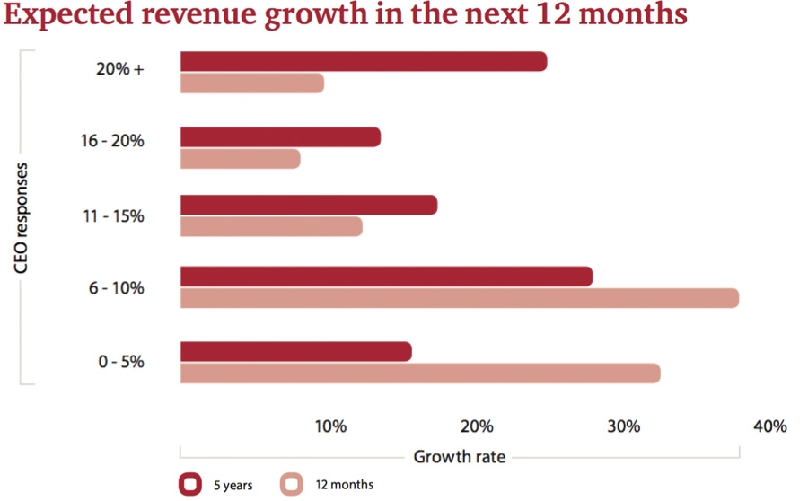 Expected revenue growth in the next 12 months