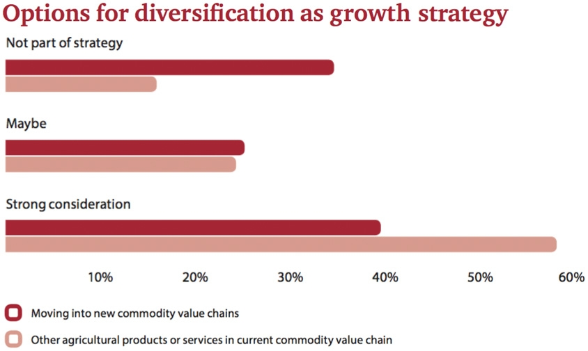 Options for Diversification as growth strategy