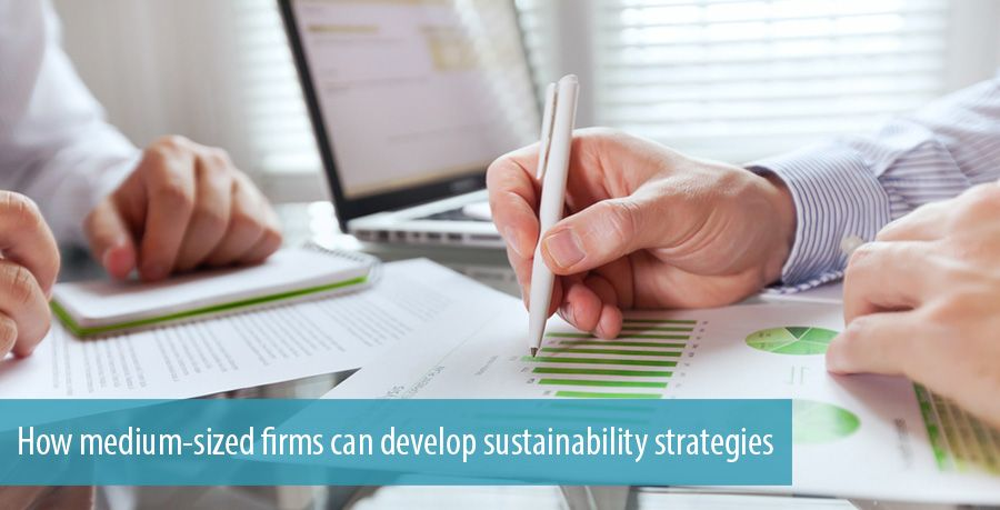 How medium-sized firms can develop sustainability strategies