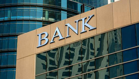 South Africa's major banks registered modest growth and diversification last year