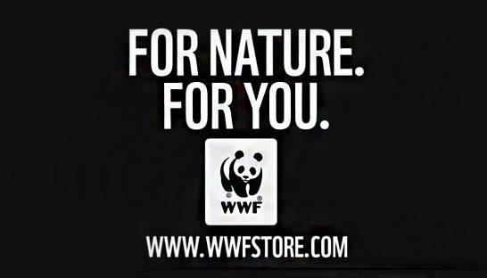 Hoorah receives Silver Loerie for WWF sustainable apparel campaign